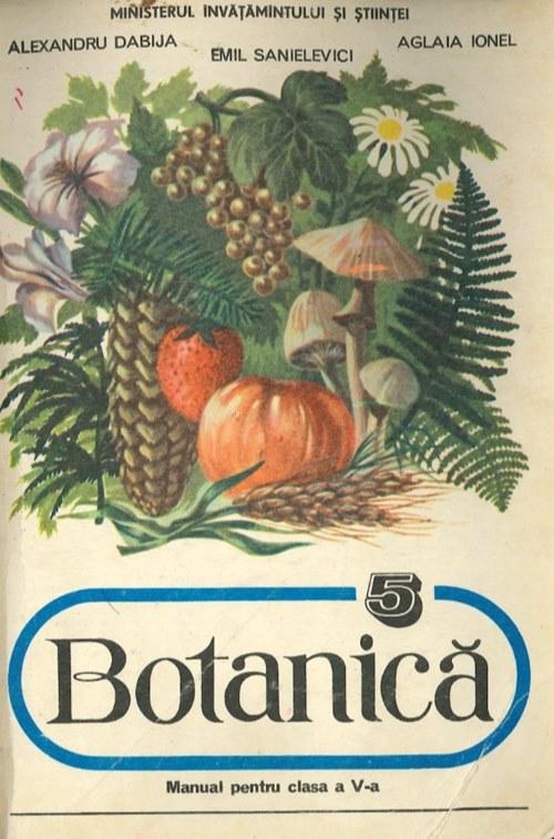 Botanică - Manual pentru clasa a V-a