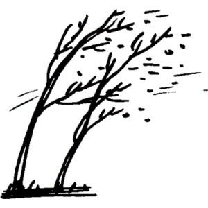 Teiul şi stejarii