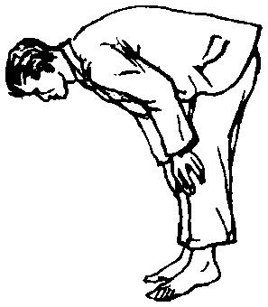 Câteva din tipurile de sărituri pentru jocul Capra